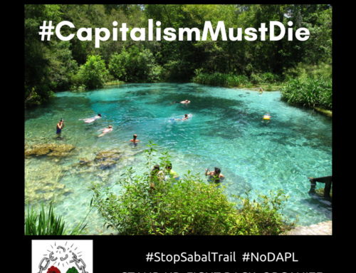 Water is Life & Capitalism Must Die. #StopSabalTrail