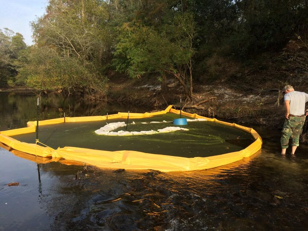 Turbidity curtains with human for scale (Chris Mericle), in Sabal Trail still leaking drilling mud into the Withlacoochee River in GA, by Deanna Mericle, 12 November 2016, at US 84